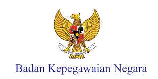 Badan kepegawaian negara, Pangkat PNS