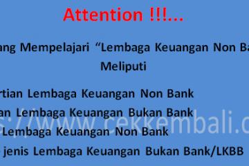 lembaga keuangan bukan bank / lkbb