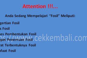 pengertian fosil