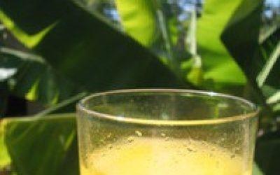 image of Peluang usaha *makanan dan minuman* modal kecil
